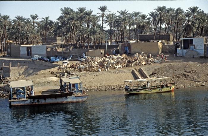 Auf der Reise nach Luxor, …