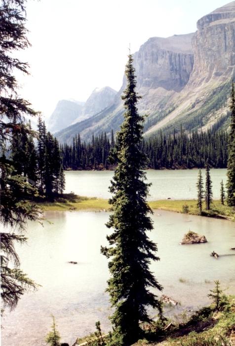 Der Maligne Lake, AB …
